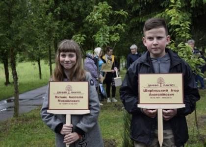 """У Новояворівську насадили """"Алею пам'яті"""" з молодих кленів"""